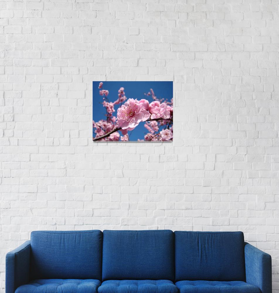 """""""Blue Sky Floral Pink Tree Blossoms Baslee Troutman""""  (2011) by BasleeTroutman"""