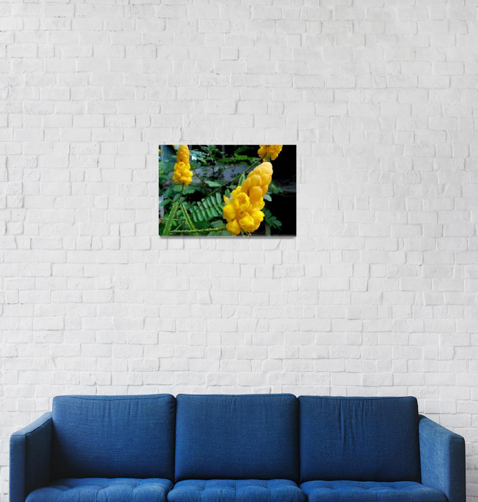 """""""Yellow Flowers 2""""  by sdch"""