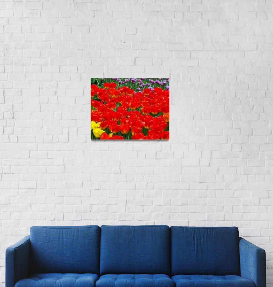 """Orange Tulip Riot""  (2007) by NateLancer"