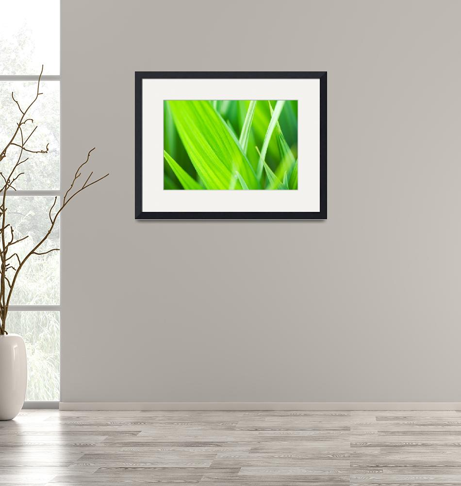 """""""Green Leaves""""  (2007) by MichaelSwanson"""