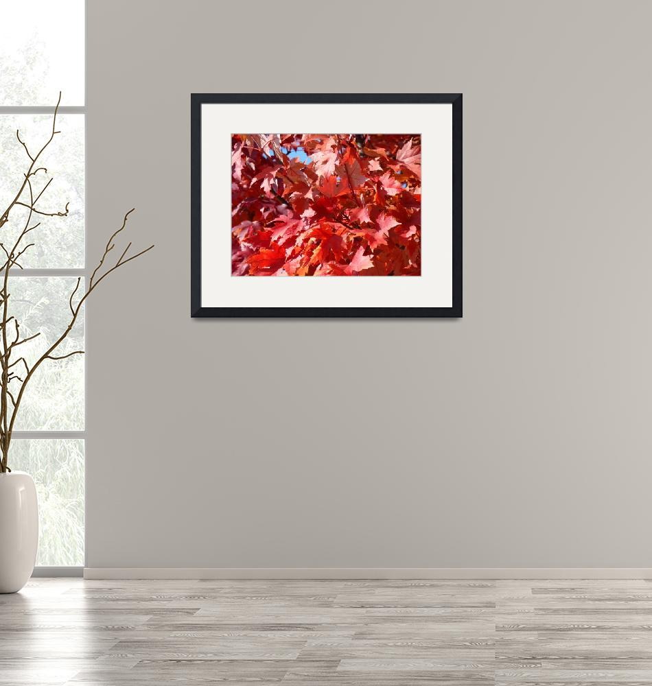"""Red Fall Leaves art prints Fall Trees""  (2010) by BasleeTroutman"