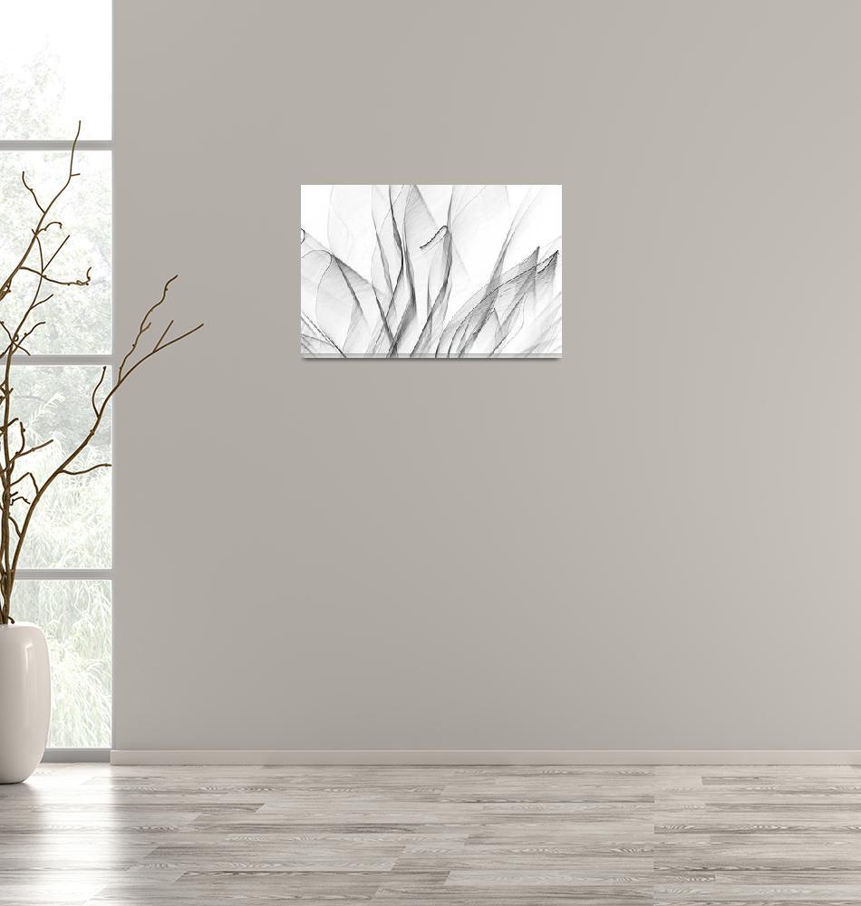 """Leafy Lace Black on White""  (2015) by joegemignani"
