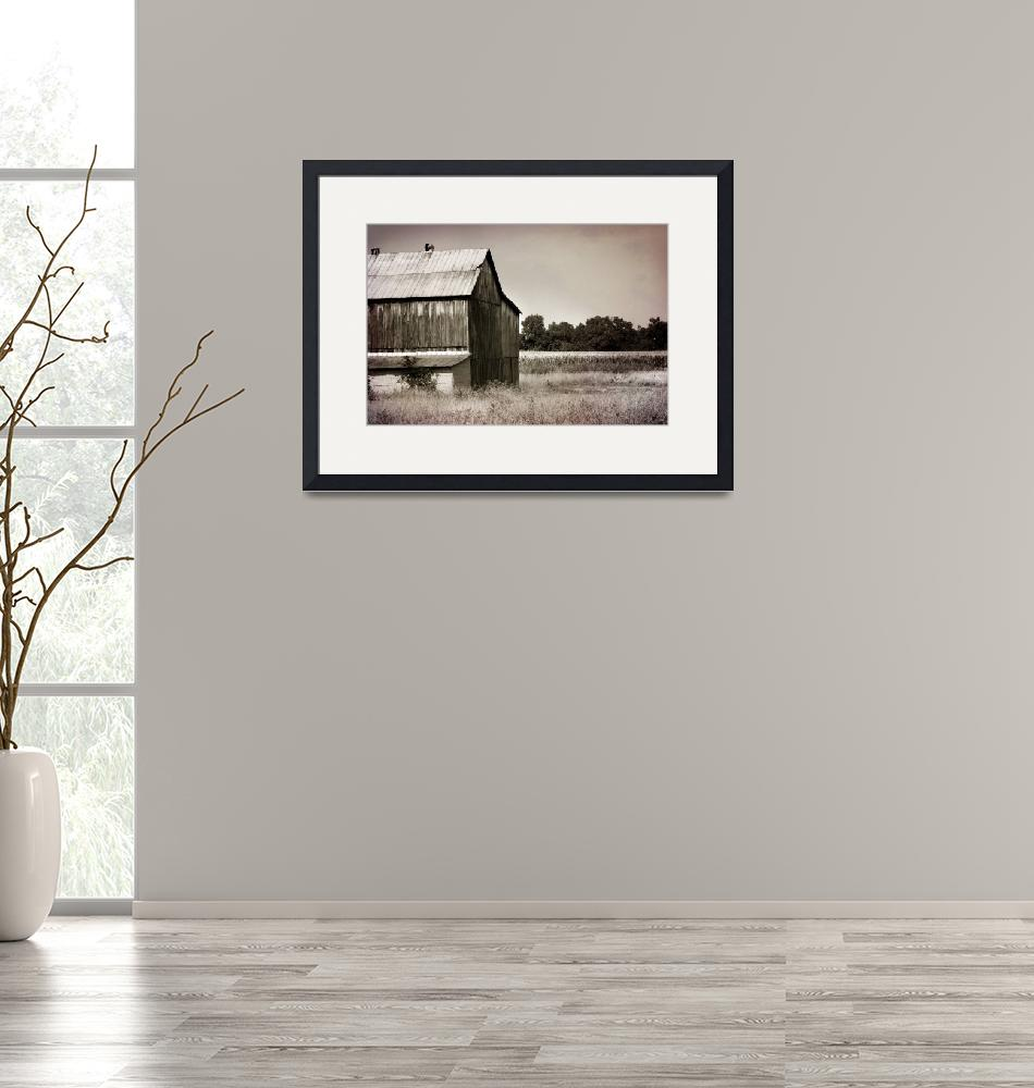 """""""Barn on the border of Tennessee and Kentucky""""  (2010) by TaraNeal"""