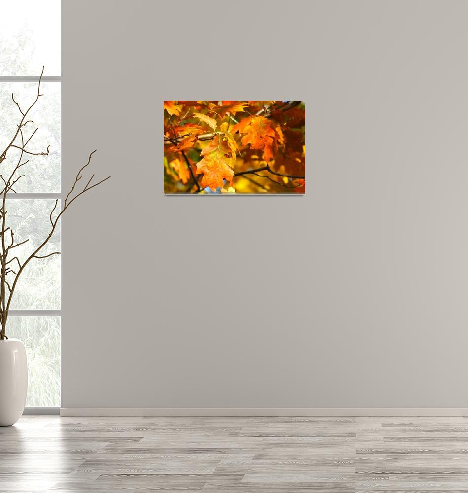 """""""Autumn Leaves""""  (2011) by LJdesigns"""
