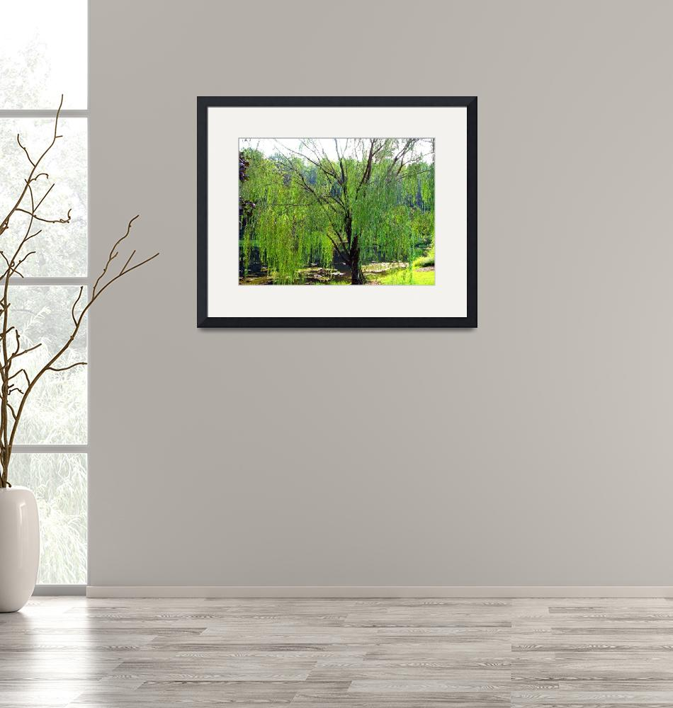 """""""Weeping Willow""""  by GypsyDesigns"""