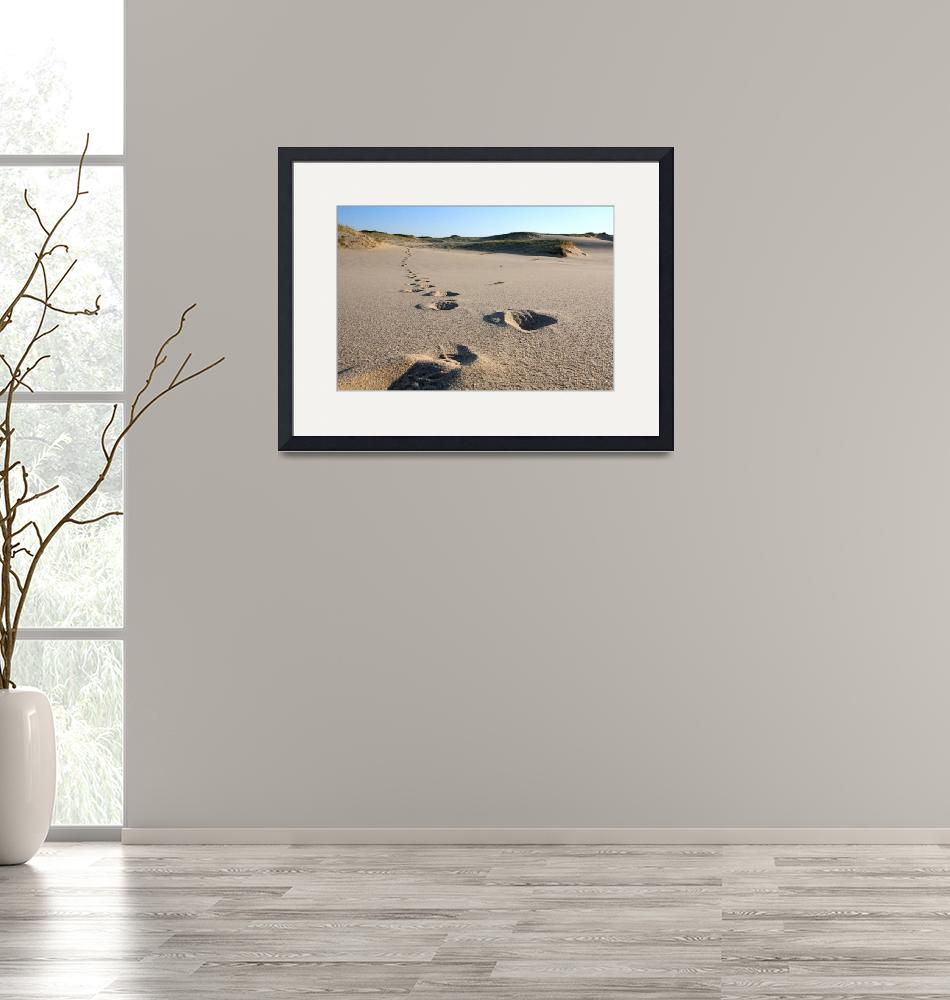 """""""Cape Cod Footsteps in the Sand""""  (2008) by ChrisSeufert"""