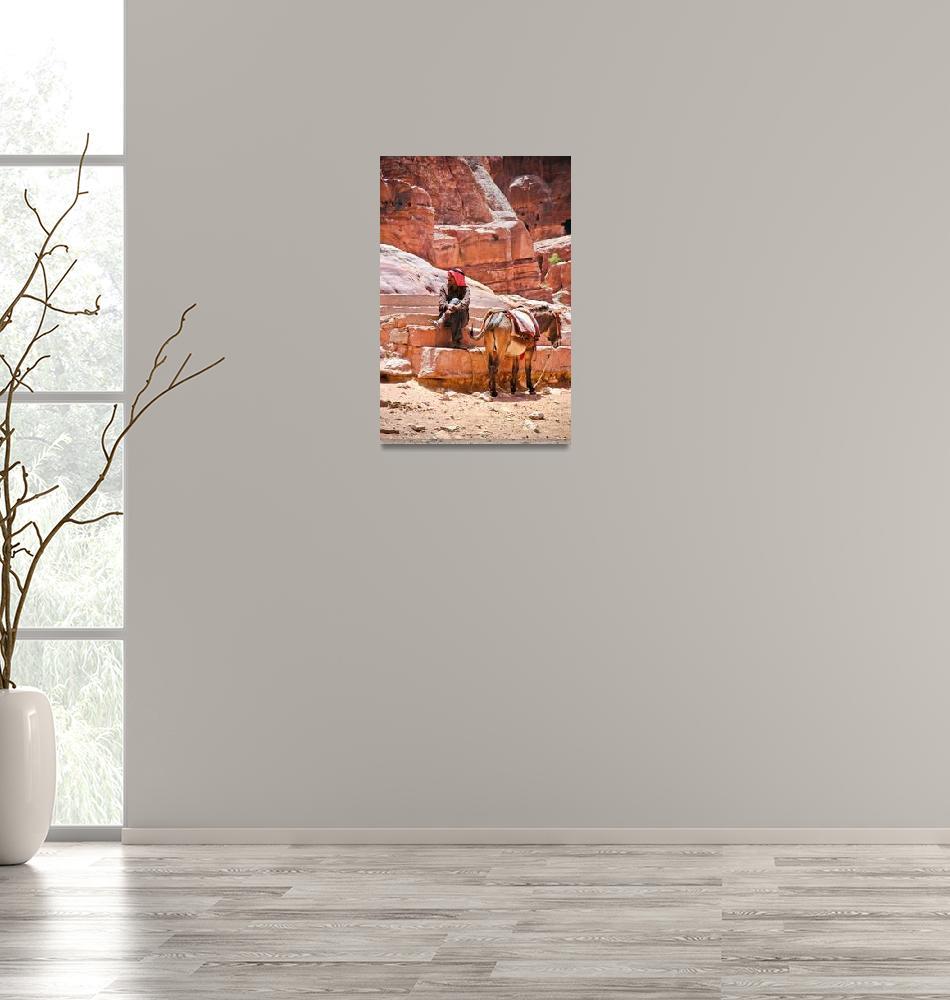 """Portrait of Man with Donkey.. Petra,Jordan""  (2006) by mjphoto-graphics"