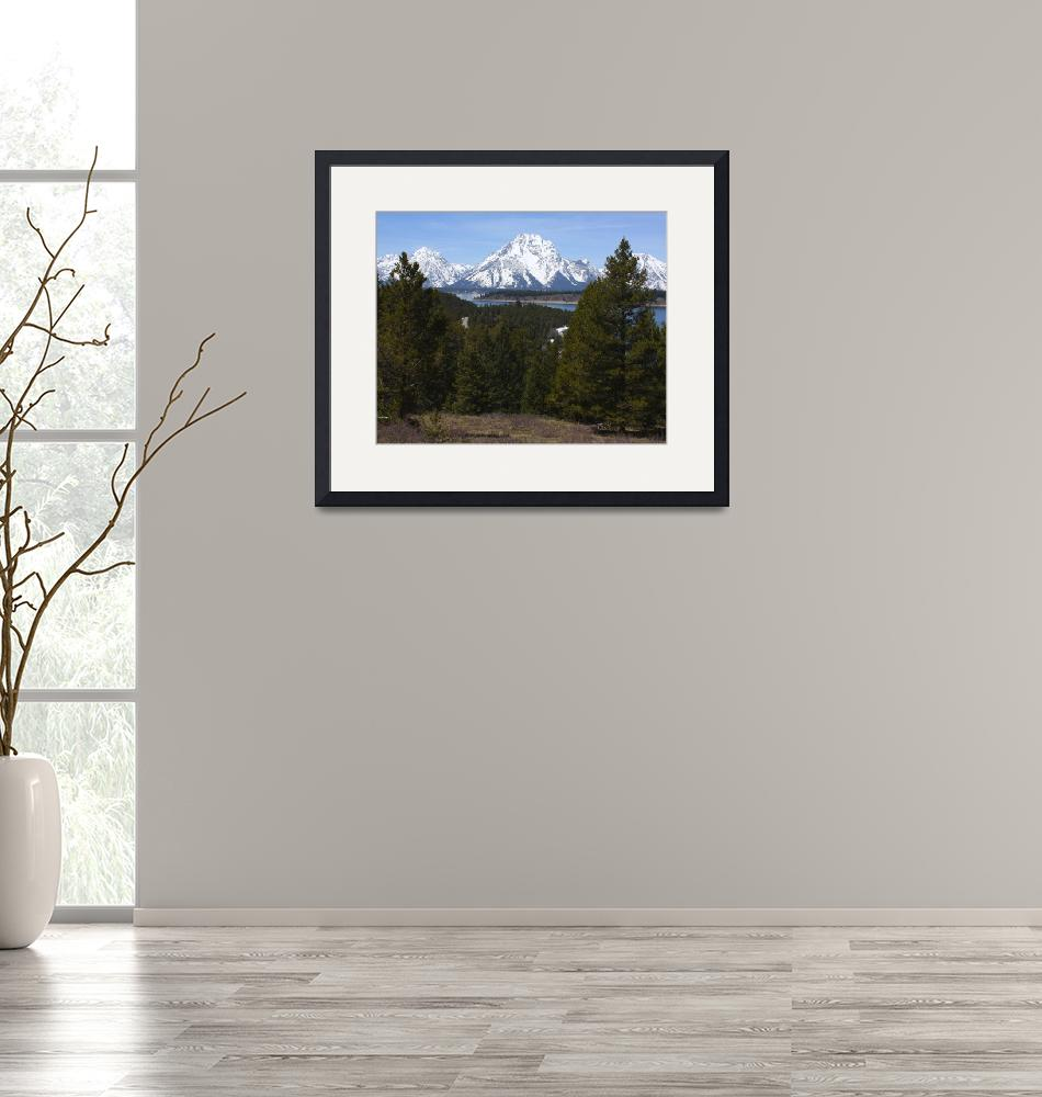 """""""Classic Teton View""""  (2009) by EclecticNature"""