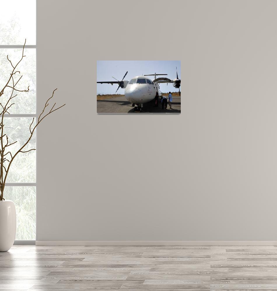 """TACV ATR-42, D4-CBH""  (2004) by JoaoPonces"