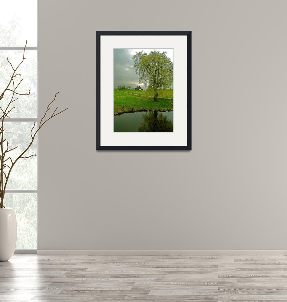"""""""Weeping Willow""""  (2008) by Tomitheos"""