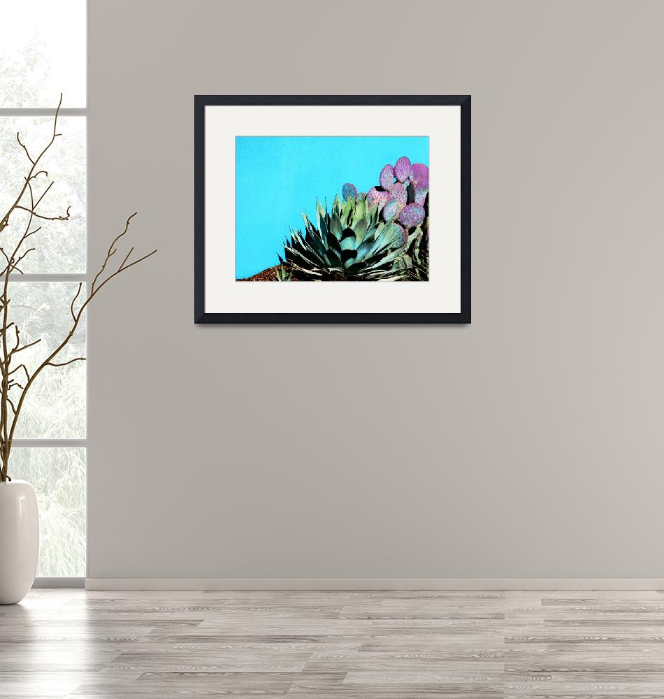 """Agave and Prickly Pear on Turquiose Wall P1030484""  (2016) by almarphotography"