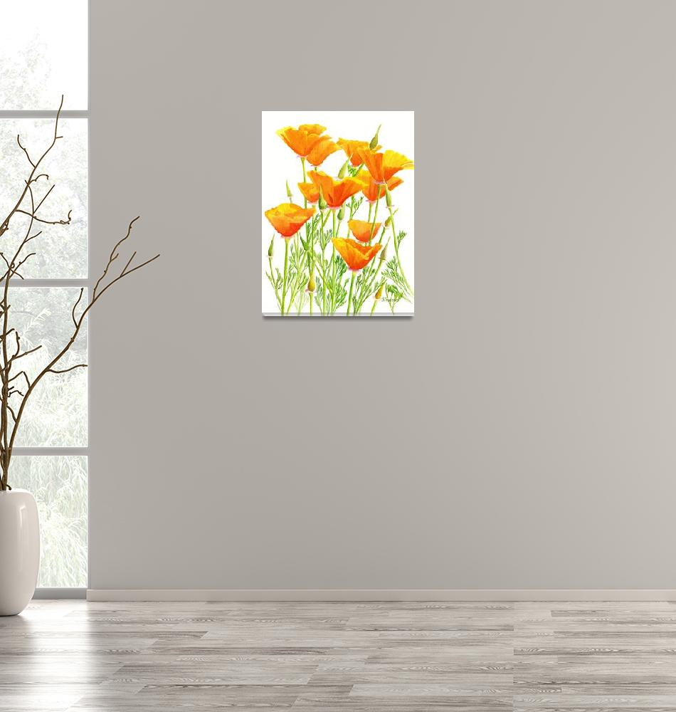 """California Poppies with White Background""  (2011) by Pacific-NW-Watercolors"