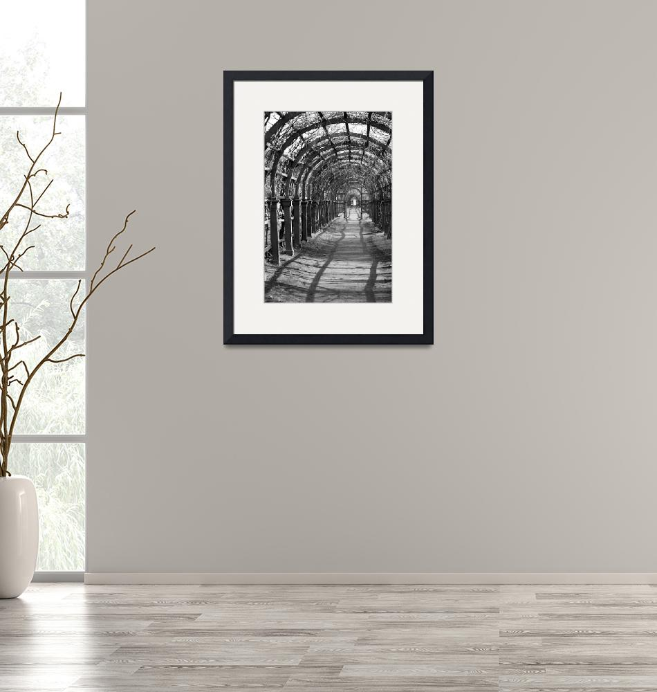 """""""Walking Archway""""  (2007) by DonnaCorless"""