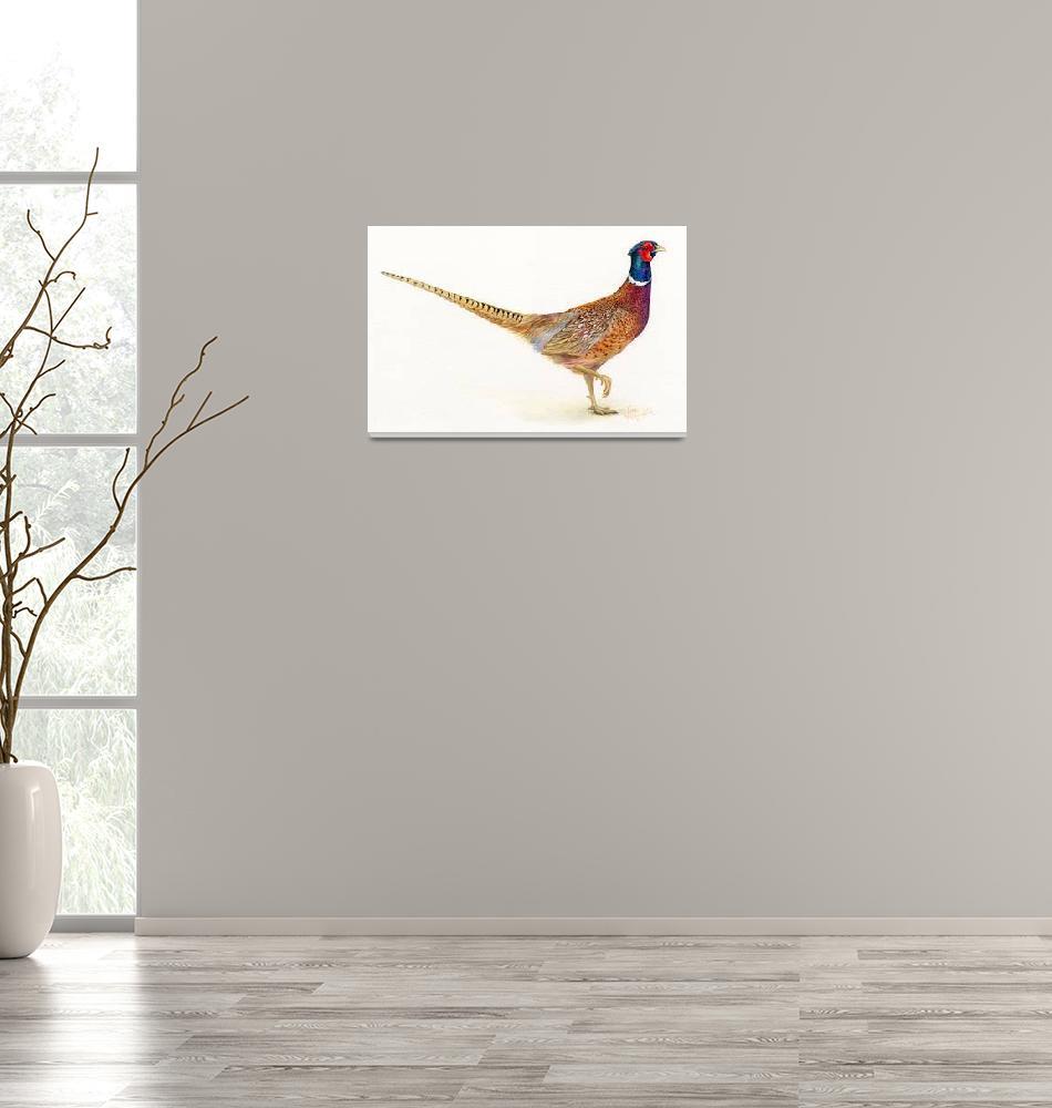 """pheasant""  (2013) by LisaMclaughlin"
