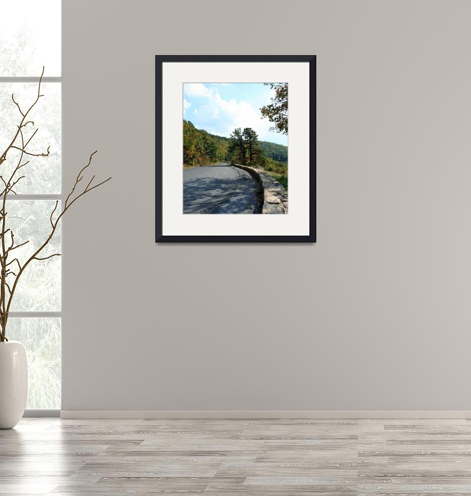 """""""Skyline Drive Road Scene 8X10 Normal Color""""  (2008) by brianyoung81"""