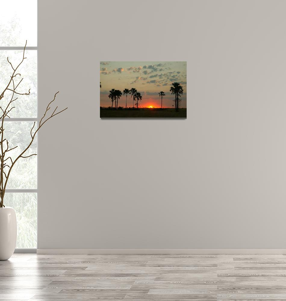 """Desert sunset""  by MichaelPoliza"