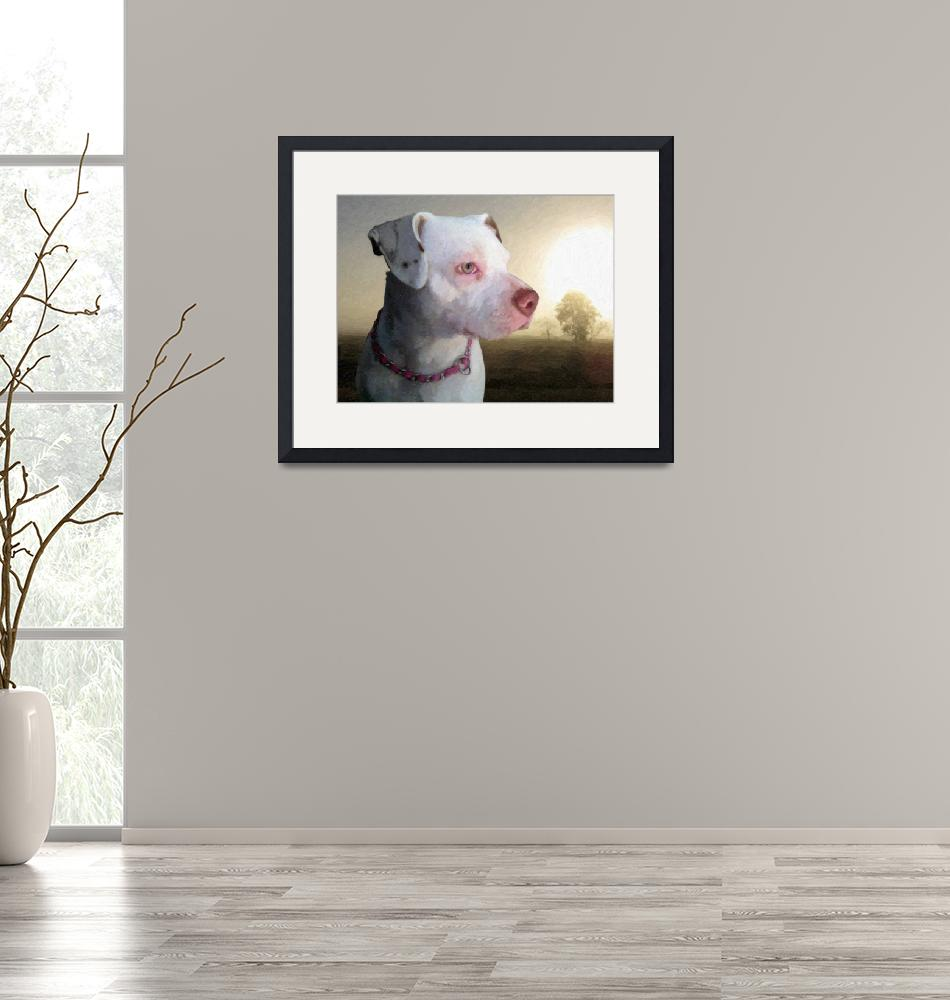 """Bull Terrier a Dawn""  (2010) by ModernArtPrints"