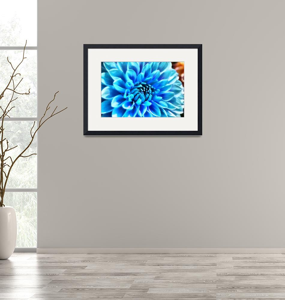 """""""Blue Flower""""  (2008) by NaturallyRed"""
