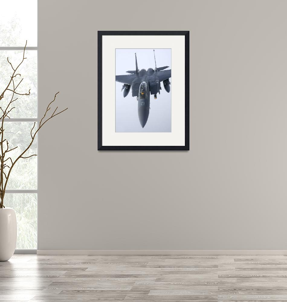 """""""F-15E Strike Eagle of the US Air Force""""  by stocktrekimages"""