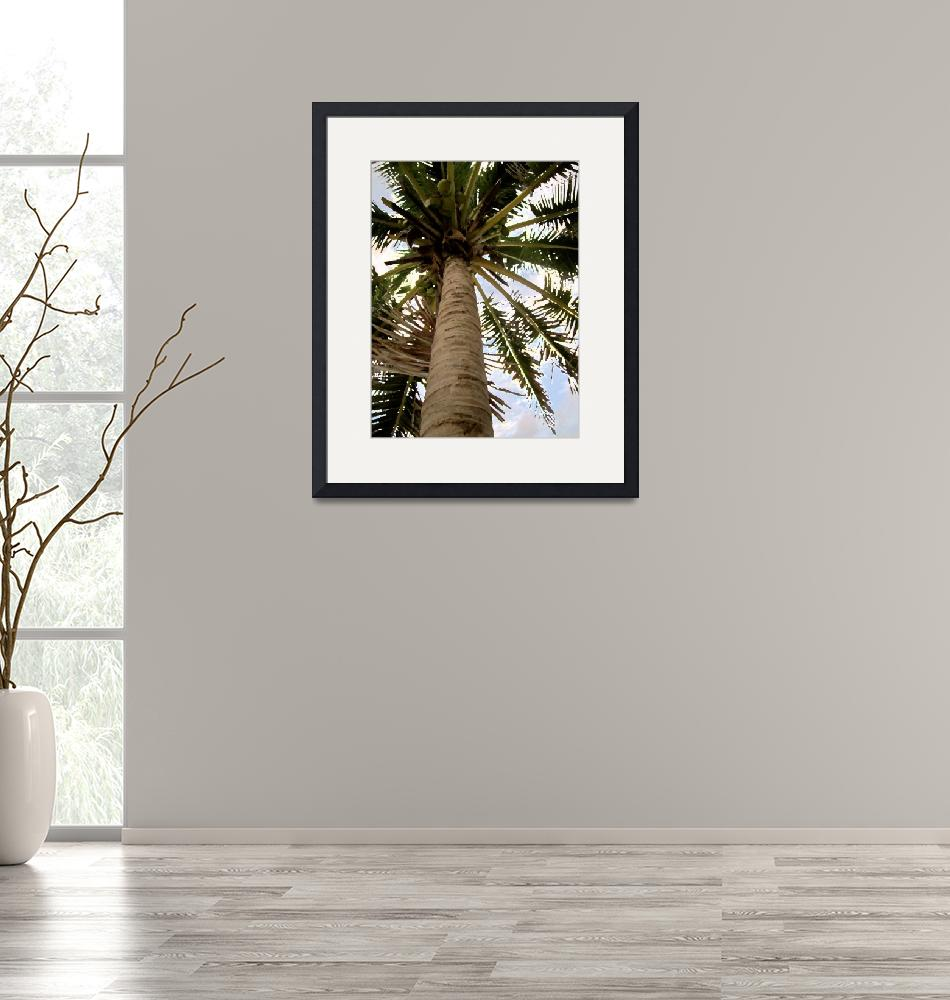 """""""Palm""""  (2013) by secondglance"""