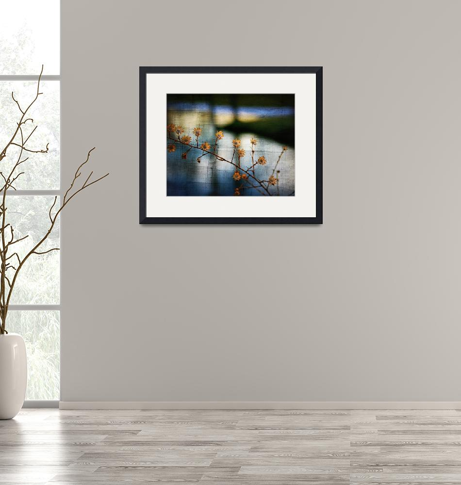 """""""flowers on the shiawassee river""""  by jimbarclay"""