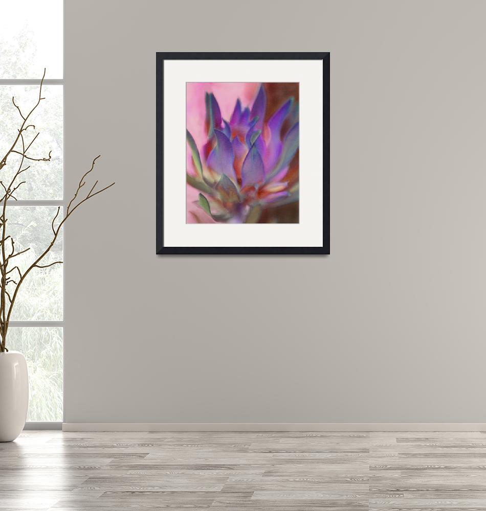 """Flaming Protea in Pink and Purple""  (2011) by SherylKaras"