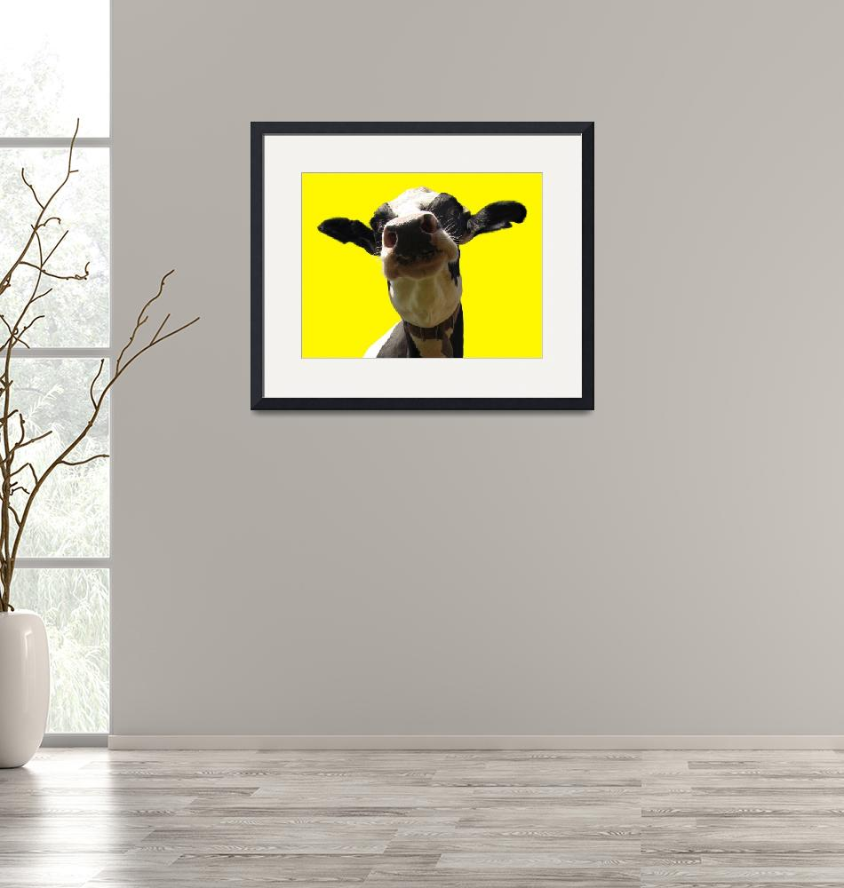 """""""Cow Crazy"""" (2011) by Dullinger"""