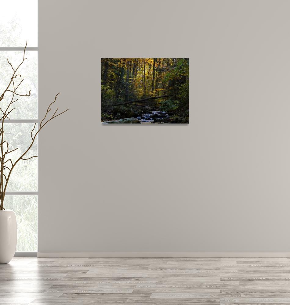 """Antietam Creek""  (2009) by mikro"