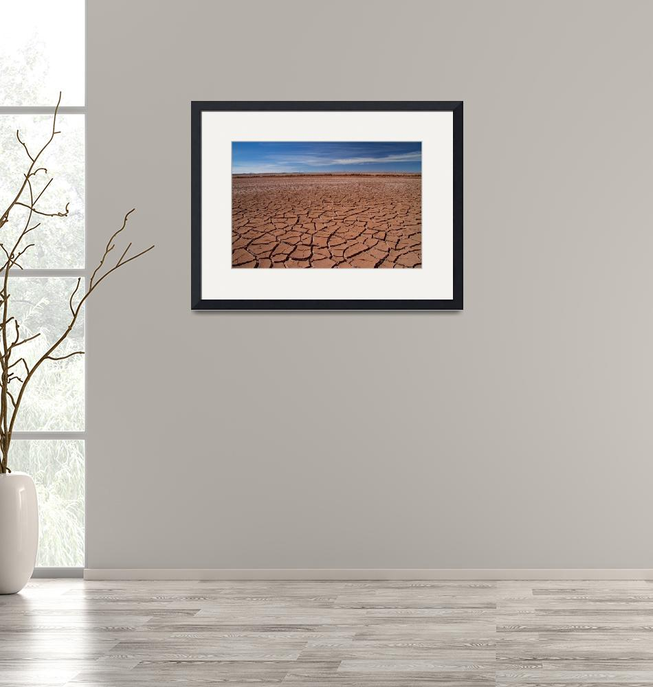 """""""Harshness of the Desert""""  by DianaC"""