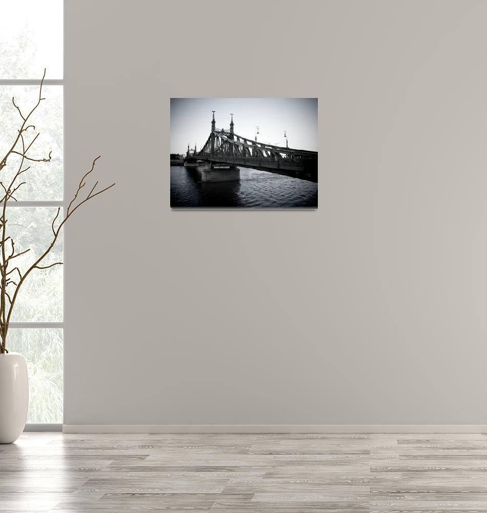 """""""Hungary: Budapest: Liberty Bridge (2014)""""  (2014) by westhompson"""