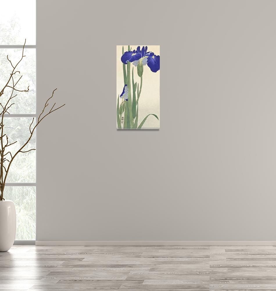 """Blue Irises by Ohara Koson""  by FineArtClassics"