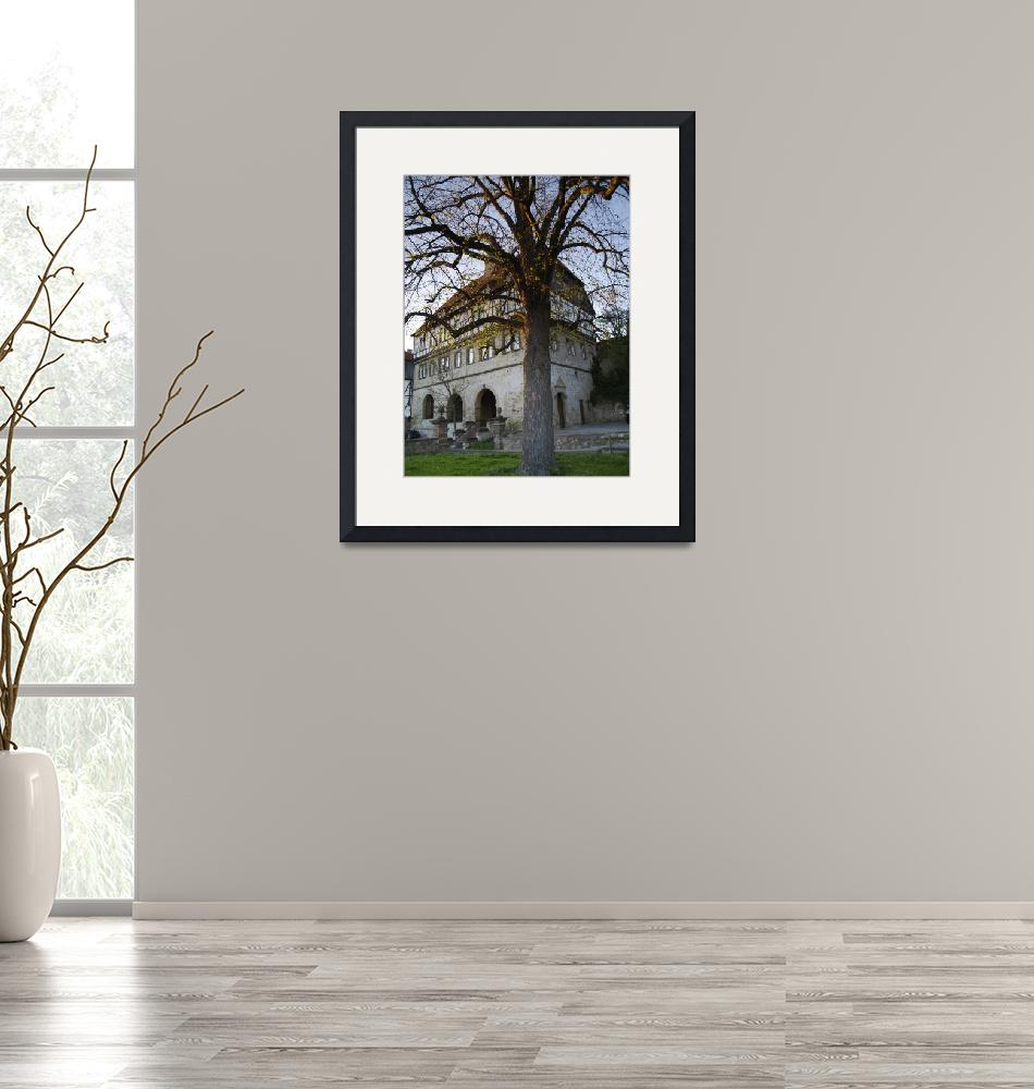 """tree at the old town hall""  (2007) by derausdo"