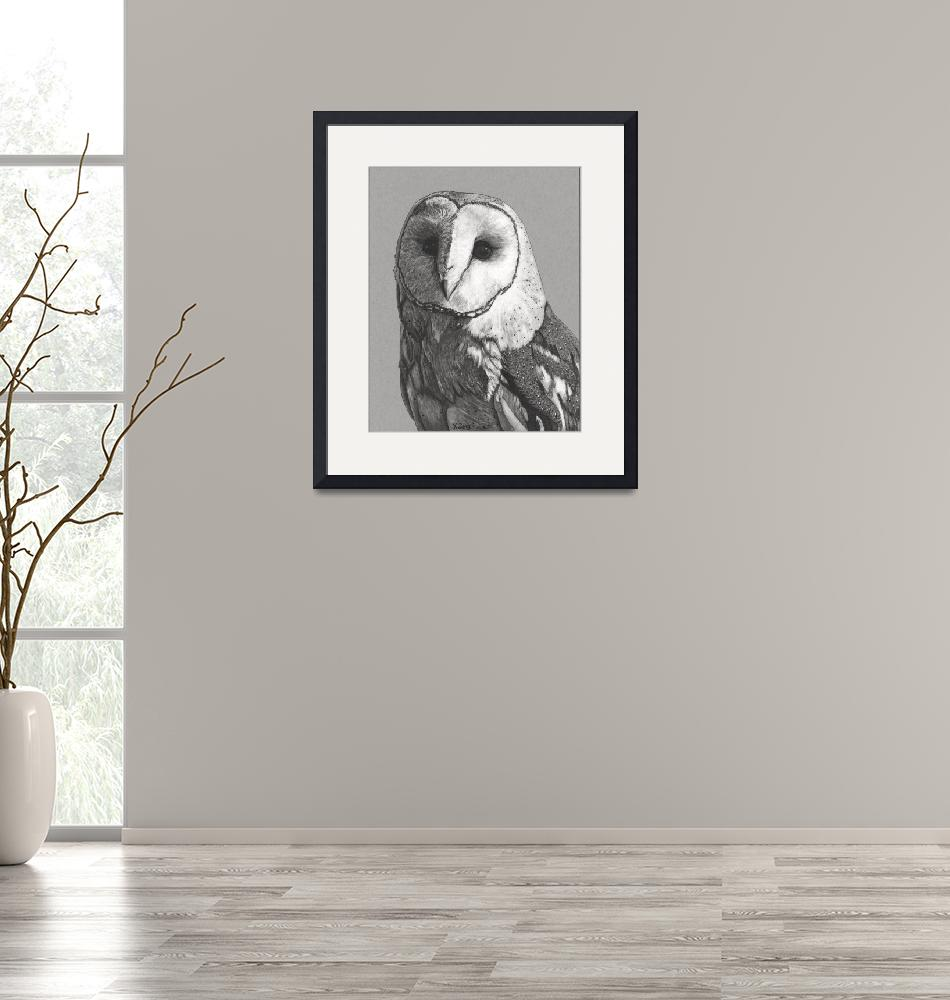 """Original ink drawing Barn owl portrait""  (2018) by yuezeng"