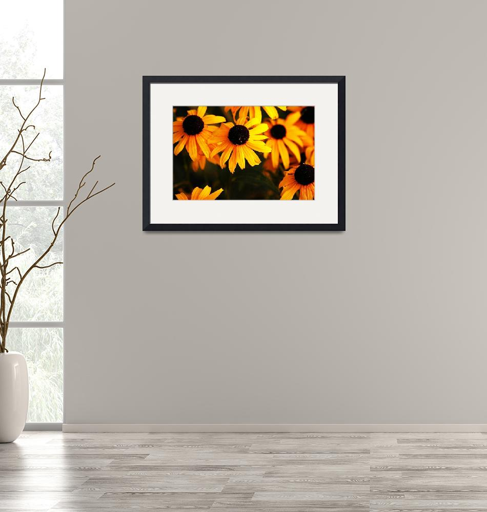 """""""Yellow Bursts""""  (2007) by claytonbruster"""