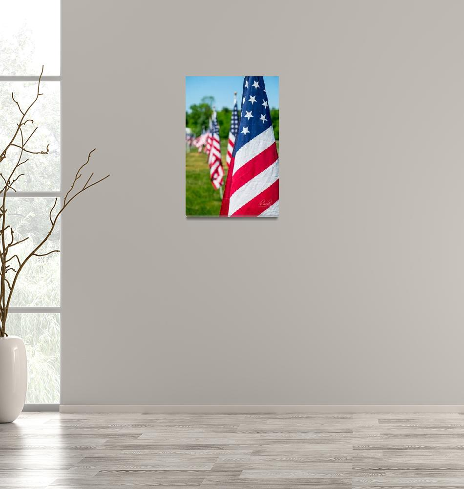 """""""The United States Flag""""  (2016) by dbwalton"""
