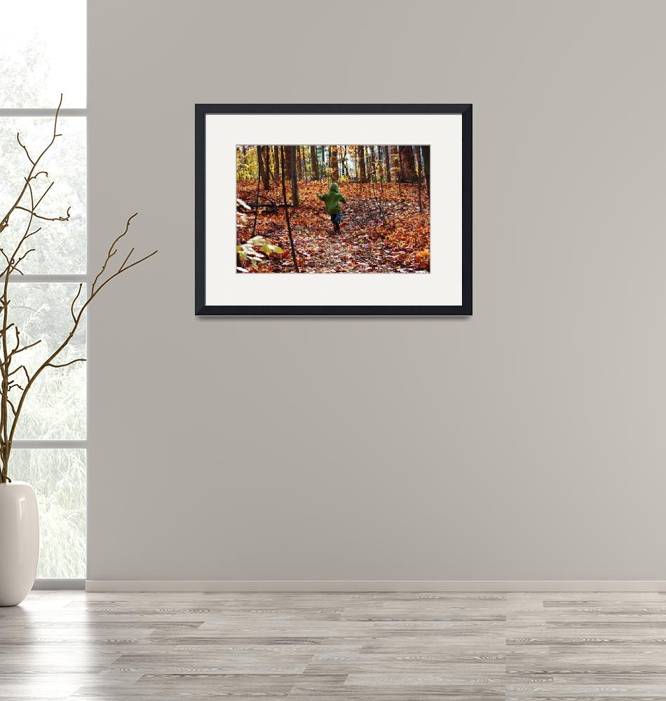 """""""A jaunt through the autumn leaves""""  (2012) by FotoMeister"""