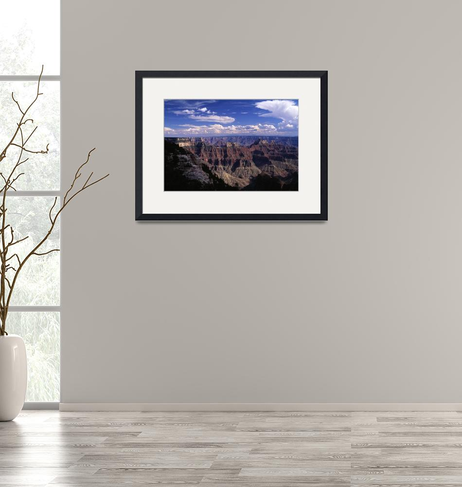 """""""Bright Angel Point view of  the Canyon""""  (2001) by TOMSHEA"""