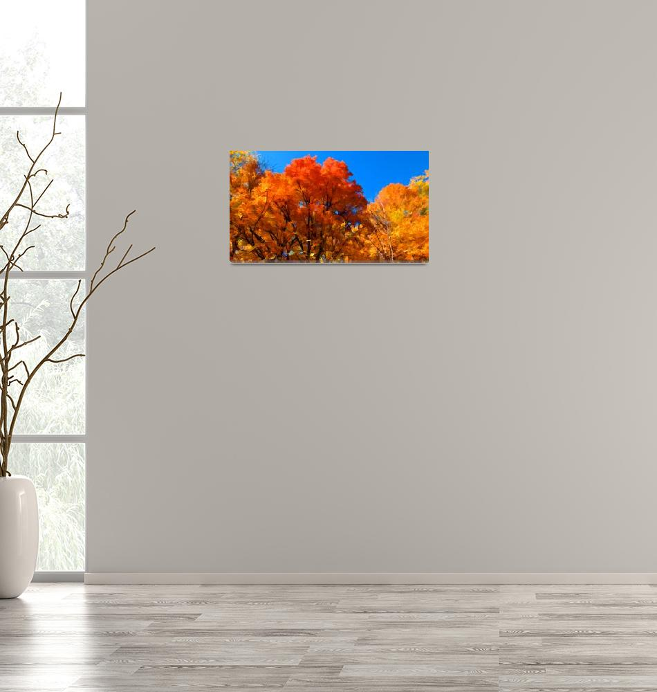 """""""Peak Fall Autumn Color,Red,Orange,Yellow Leaf Tree""""  (2010) by Chantal"""
