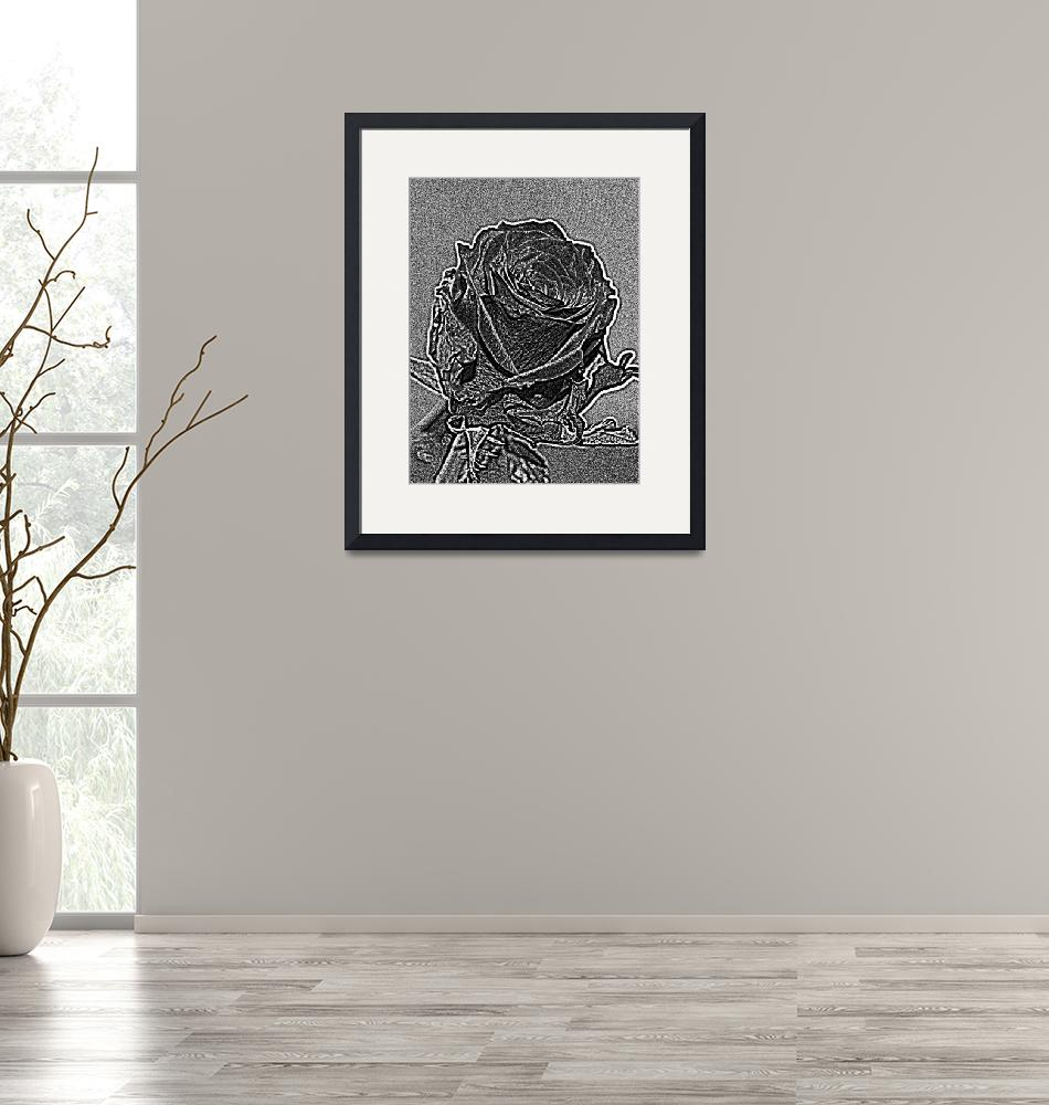 """Monochrome Rose""  (2016) by Jurchx"