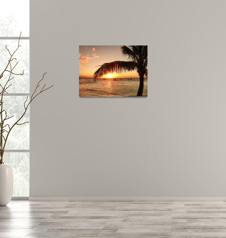 """Mauritian Sunset""  (2008) by blessedwalnut"