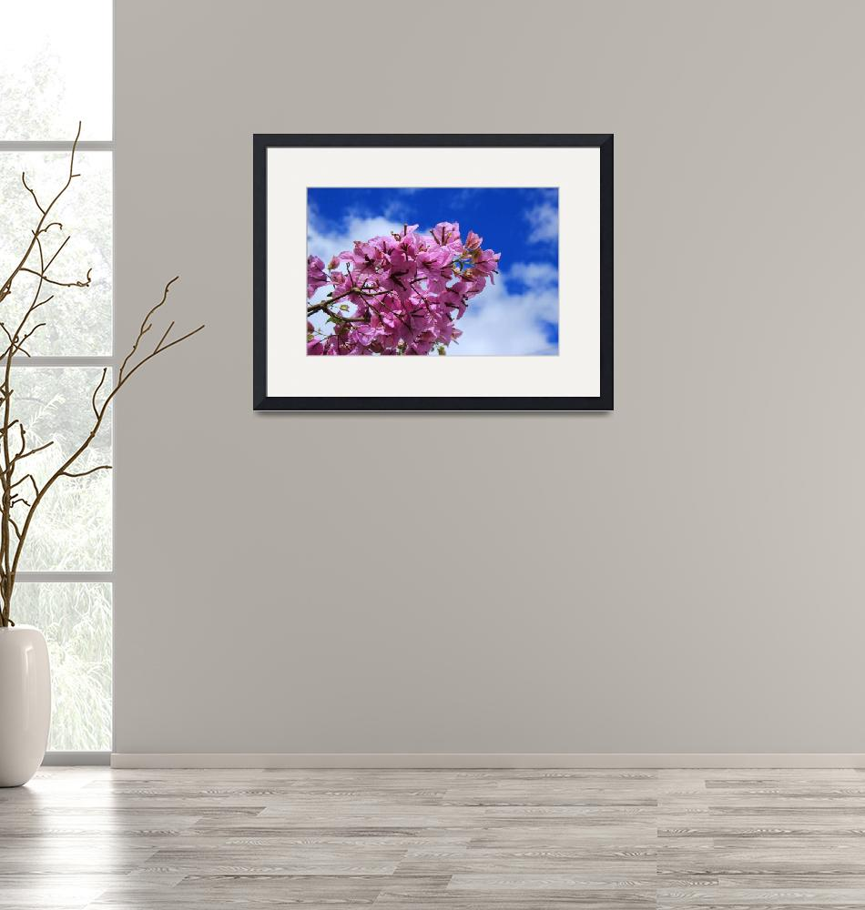"""""""Purple Blossoms on a Branch""""  (2015) by rhamm"""