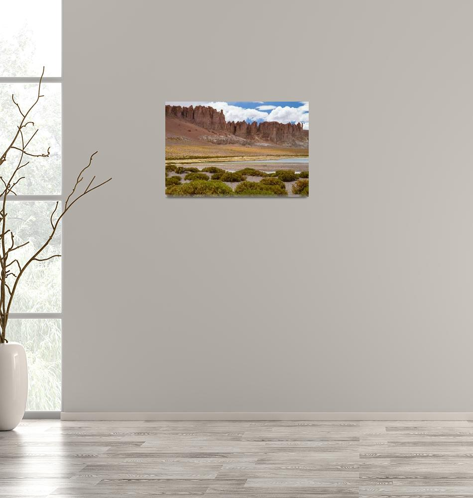 """Tara landscape""  by DianaC"