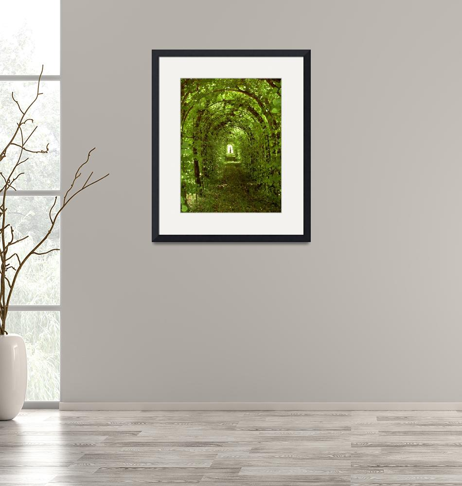 """""""C:\fakepath\Green Archway""""  by Vistaphotos"""