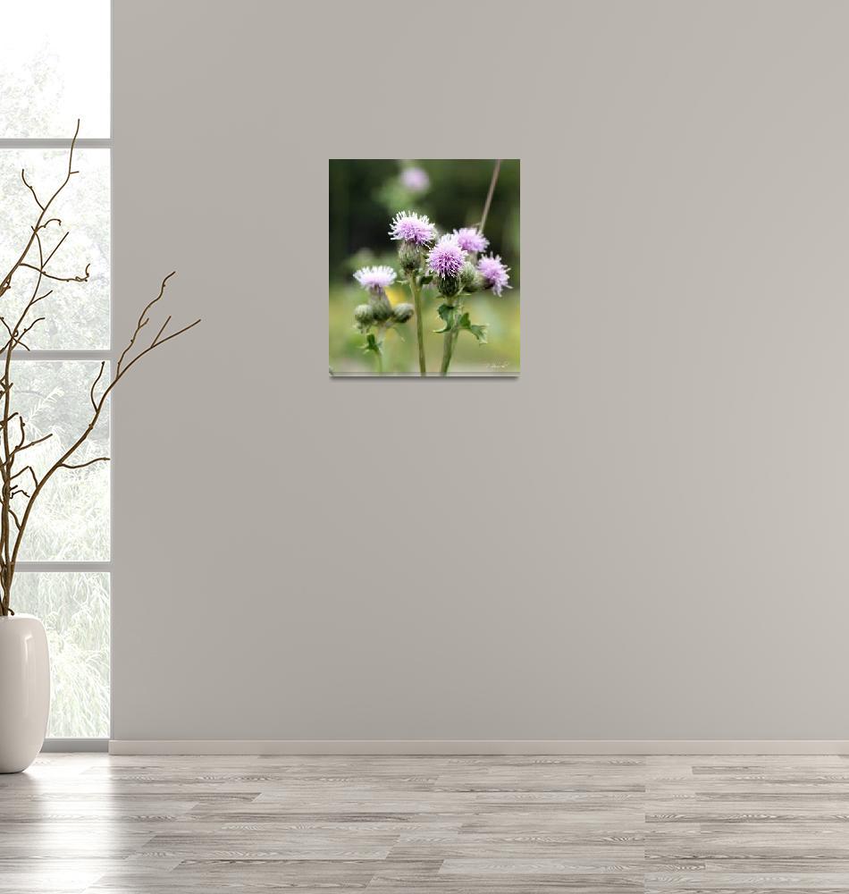"""wildflower""  by buzibee55"