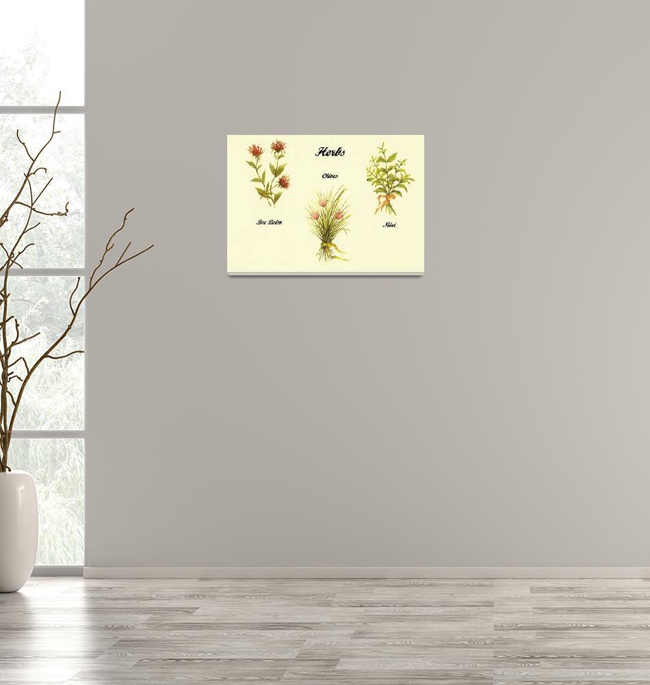 """""""3 Herb Paintings""""  (2011) by vigliotti"""