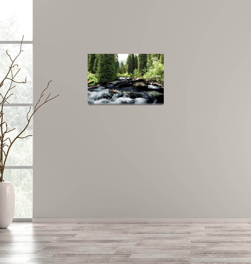 """Wild river in Tian Shan""  (2018) by robertgrac"