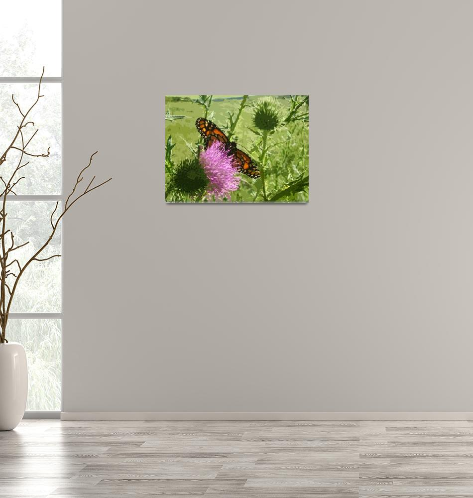 """Monarch Butterfly on Thistle"" (2011) by jodipflepsen"