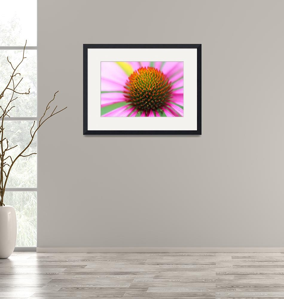 """Purple Coneflower Macro""  (2016) by KsWorldArt"