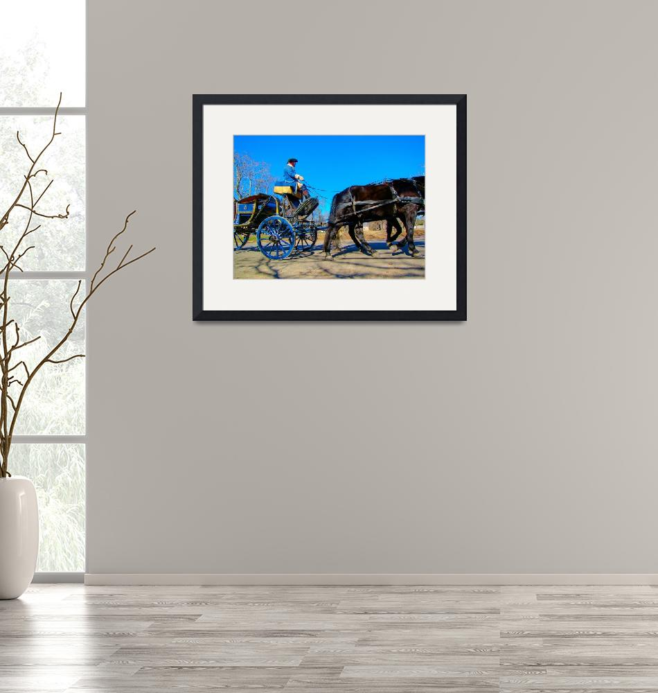 """""""Colonia Williamsburg VA Carriage 5798""""  (2008) by JTPatterson"""