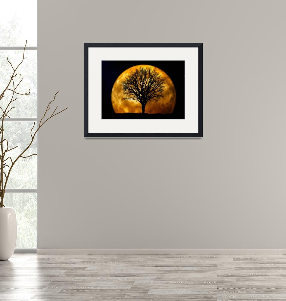 """MOONLIGHT LANDSCAPE ART PRINT""  by rogueart"